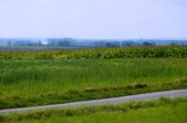 View across Messines Battlefield towards Loos – Loos and Ypres Battlefield Tour