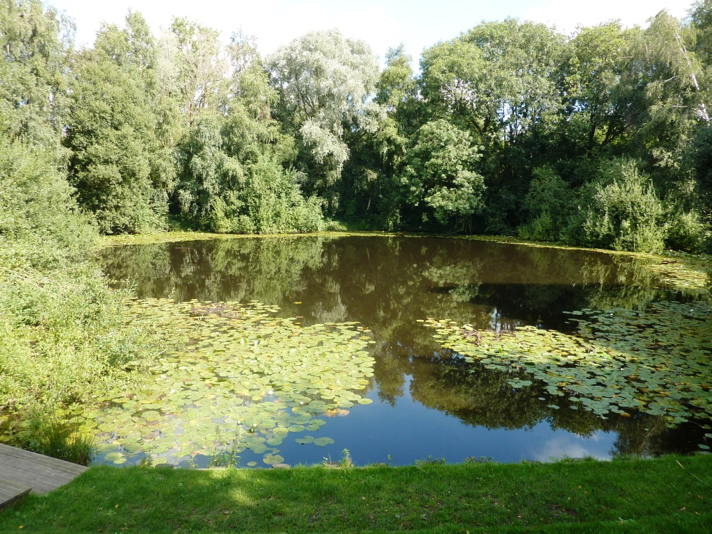 17 Spanbroakmolen, the Pool of Peace - formerly known as the Lone Tree Crater