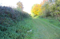The Sunken Lane, famous for being filmed by Geoffrey Malins for the official war film The Battle of the Somme. The 1st Lancashire Fusiliers gathered here ready to go over the top – Somme and Ypres Battlefield Tour