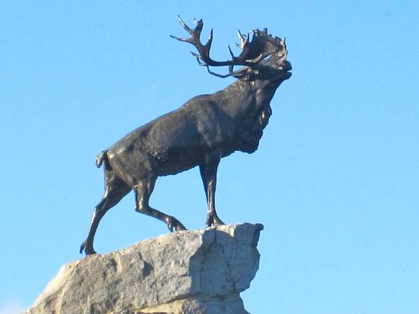 39 Grieving Caribou Memorial
