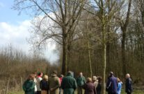 Outskirts of Battle Wood at Hill 60 – Ypres Salient Battlefield Tour