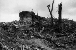 Battles of the Somme – Pozieres Ridge