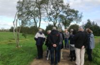 The Danger Tree at Newfoundland Memorial Park – Somme and Ypres Battlefield Tour