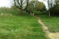Hill 60 walk – Somme and Ypres Battlefield Tour