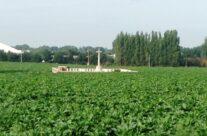 Welsh Cemetery (Caesar's Nose) – Passchendaele Anniversary Remembrance Battlefield Tour