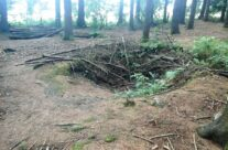Easy Company Fox Holes in Bois Jaques over looking Foy – Easy Company Private Battlefield Tour