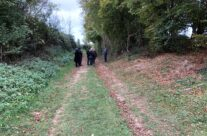 The Sunken Lane – Somme and Ypres WW1 Battlefield Tour