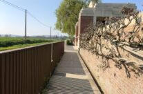 Entrance to Lijssenthoek Military Cemetery – Beers and Battlefields of Flanders WW1 Tour