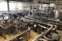 The bottling plant at Bierkasteel Brewery – Beers and Battlefields of Flanders WW1 Tour