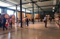 Beer aging in brandy barrels at Bierkasteel Brewery- Beers and Battlefields of Flanders WW1 Tour