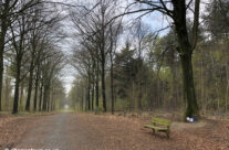 Polygon Wood – Somme and Ypres WW1 Battlefield Tour
