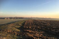 View across the Messines battlefield from the Spanbroekmolen Crater to Wytschaete. The 36th Ulster Division attacked over this land – Messines Discovery Battlefield Tour