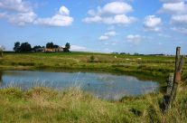 Kruisstraat's three craters – Loos and Ypres Battlefield Tour
