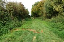 The Sunken Lane made famous in the Geoffrey Mallins film, Somme and Ypres Battlefield Tour