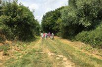 Walking along the Sunken Lane made famous in the Geoffrey Mallins film – Etaples and Somme WW1 Battlefield Tour