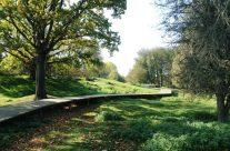 Hill 60 – Taste of Flanders Ypres Battlefield Tour