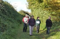 The tour party in the Sunken Lane – Somme and Ypres Battlefield Tour