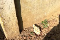 A grenade found near Highland Cemetery – Arras 100 Anniversary Battlefield Tour
