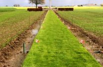 Track X Cemetery – Armistice in Ypres and Passchendaele 100 Anniversary Battlefield Tour